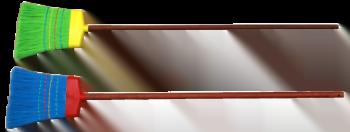 Matura Multicolora cu Coada 634179